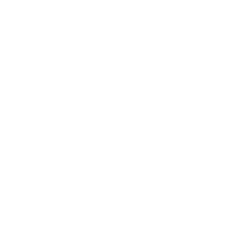 Service - Creative Icon